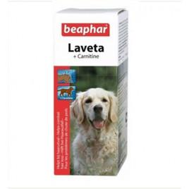 Laveta Carnitin Multi-Vitamin 50 Ml