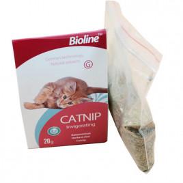 20 Gr Catnip