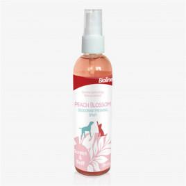 118 Ml Parfüm Peach Blossom