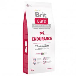 12 Kg Endurance