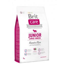 Junior Large Breed Lamb & Rice 3 Kg