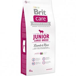 12 Kg Junior Large Breed Lamb & Rice