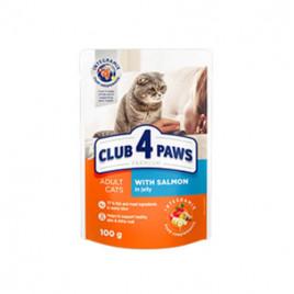 Club 4 Paws Premium Yetişkin Jöleli Somon 6x100 Gr