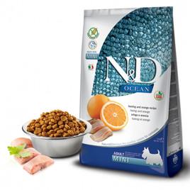 N & D Ocean 2,5 Kg Herring & Orange Adult Mini  (30)