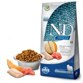 N & D Ocean 12 Kg Salmon, Cod & Cantalupe Melon Maxi Giant