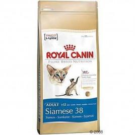 Siamese Siyam Yetişkin Kuru Kedi Maması 2 Kg