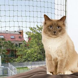 4x3M Kedi Cam Koruma Ağı Yeşil