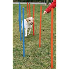 Köpek Agility Eğitim Direkleri